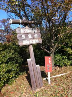 goshiki_01.jpg