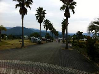 kaifu_adv10_00008.jpg