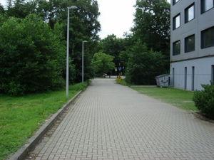 ger_forest_00003.jpg