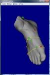 my_foot.jpg