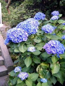 nagasaki_00040.jpg