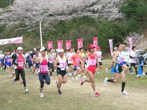 sakurakaido2009_02.jpg